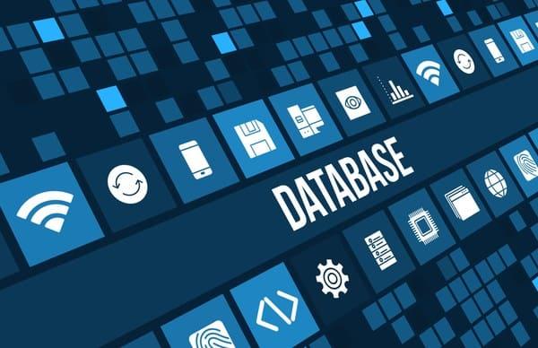 Base De Datos Bdua